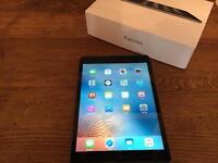 🍏 iPad mini 1 wifi 16gb Immaculate Condition