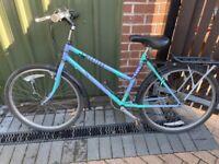 Raleigh montana'80s retro bike