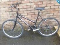 Ladies Town / Mountain Bike in good condition