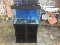 Fish tank tropical aquariums 190l offers are welcome