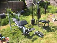 Weight bench and Multigym