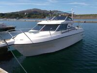 Boat Wanted: Sports or Cabin Cruiser by private buyer