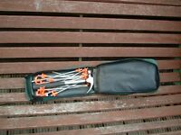 Camping metal tent pegs and carry bag
