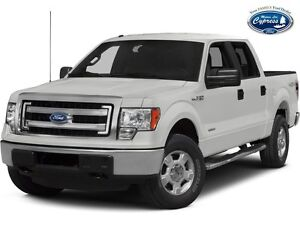 2014 Ford F-150 XLT (Remote Start  Back Up Camera  Bluetooth)