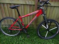 SPECIALIZED HARD ROCK COMP bicycle 24speed