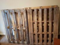 Pallets collection only