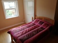 Large double room in a professional houseshare in central Reading - £475 pcm inc. bills