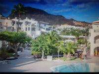 """ Late Deal"" Sunset Harbour Club, Costa Adeje, Tenerife. 2 bed apartment"
