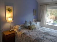 Beautiful double room to rent Mon to Fri in owner occupied home