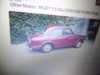 Wanted. Riley 1.5