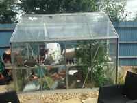 8ft x 6ft greenhouse for sale buyer will have to dismantle and collect