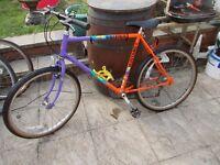 mens mountain bike raleigh mustang