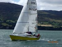 1/4 TONNER- DYNAMO 25 GREAT CLUB RACING YACHT £5000