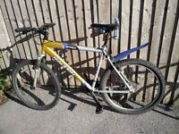 Mountain bicycle perfect for commuting in the city