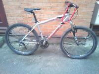 specialized rockhopper mtb