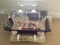 Hamster cage with two dwarfs