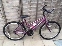 """Handbuilt Raleigh Max Ogre Ladies/Girls 12+ Mountain trail bike (26"""" Weinmann Alloy wheels) SUPERB"""