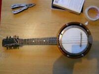 Vintage Mandolin-Banjo for sale