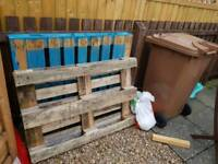 Free pallets to collect