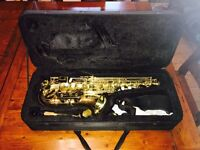 Saxophone perfect for juniors and beginners