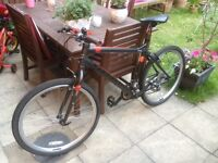 2015 Carrera PARVA LTD Edition Hybrid Road / Mountain Bike not trek dawes giant specialized racer