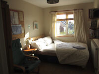Mon-Fri, quiet, sunny bedroom with garden view, nr Bedminster Station