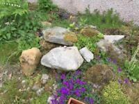 Garden rocks/stones