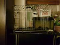 Flat pack pet carry cage