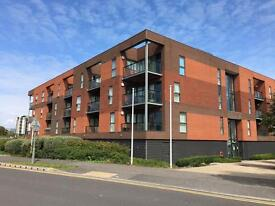 1 Bedroom Unfurnished Flat to Rent - Walking Distance to Friars Walk Available 20th September
