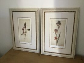 Laura Ashley pair pictures