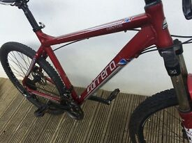 Carrara Mountain bike