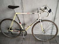 Classic Raleigh Kelloggs Pro Tour Team Replica Road Bike. M/L 23inch Reynolds 501 Frame,Alloy Wheels
