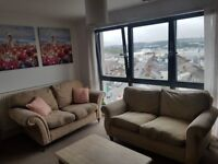 2x seat sofas