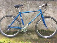 Specialised Rockhopper mountain bike