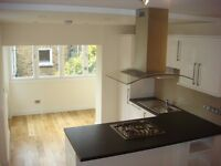 Stunning Large 3 Bed Flat To Rent in Battersea Only 10 Mins Walk To Queenstown Road Railway Station