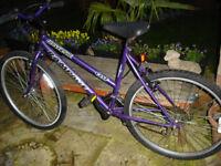 universal rampage 15 speed ladies bike nice bike