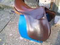 Eldonian Saddle