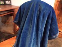 A gorgeous length of velvet. Royal blue