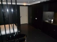 Beautifully Presented STUDIO / Pan Peninsula , Canary Wharf Area / Gym, Spa & Swimming Pool Inc
