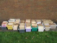 Large collection of 78 Records 1500 + 78s 1920s, 1930s, 1940s, 1950s