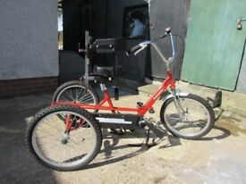 Tricycle - Theraplay 20'' trike