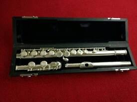 Flute trevor James 10x