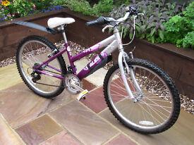 Raleigh Krush 24 Girls Bicycle ( 9 - 12 yrs ).