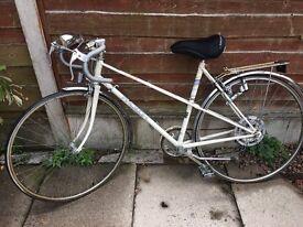 Vintage alpha sport Raleigh bike for sale