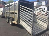 Trailer For Williams Cattle trailer for sheep and cows