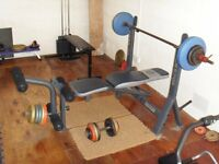 weights bench marcy classic