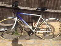 Raleigh Pioneer classic unisex hybrid bike * New tires and tube*
