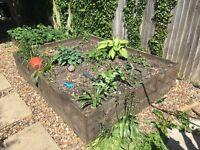 Raised plant bed/ Vegetable patch/ sandbox/ FREE
