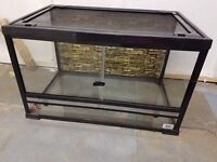 Glass Tank with Removable Mesh Lid