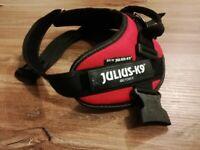 Dog Harness- Julius K9